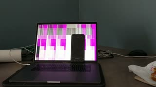 Screen Interference from Phone - Video