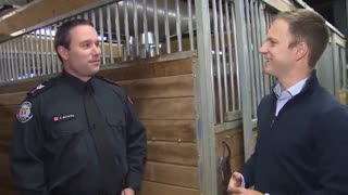 Mounted officers bond closely with their partners – both human and equine
