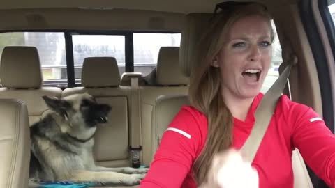 Dog Hilariously Howls Along To Queen's 'We Are The Champions'