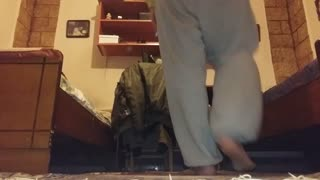 My dog jump from one bed to other (other side cam) - Video