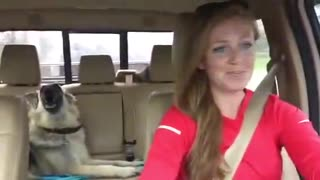 VIRAL - Dog sings with owner - Video