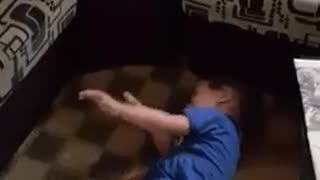 Boy plays with white dog - Video
