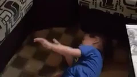 Boy plays with white dog