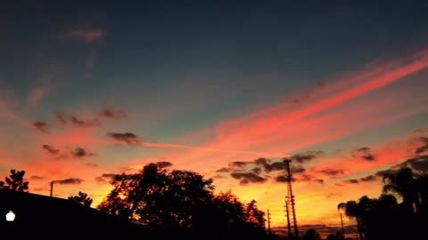 Must see - Gorgeous pink and gold FL sunset
