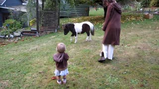 1-Yr-Old Girl Has Never Seen a Horse Before-Her Reaction Melts Everyone's Heart - Video