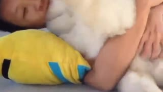Puppy dog sleeping with all looked just want to hug - Video