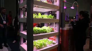 Growing vegetables via your smartphone - Video