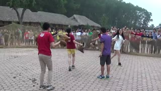Fun Vietnamese folk games - Catch the chicken - Video