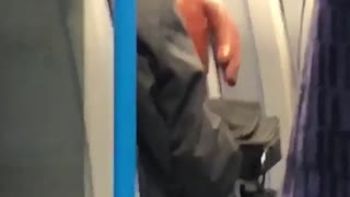 Person with orange brown monster on train