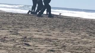Guy in black jacket and black hat dancing on beach