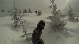 Snowboarder with selfie stick crashes into tree - Video