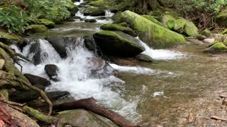 Mountain stream peace