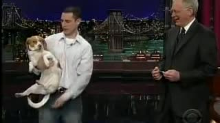 Dog on TV does the most hilarious thing when told to play dead - Video