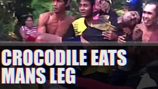 NSFW - Crocodile Eats Mans Leg - Video