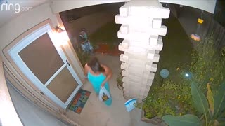 Halloween Trick or Treat Package Thief