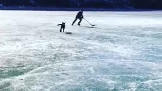 Labrador Plays Hockey On A Frozen Lake - Video