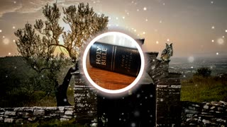Holy Bible Ruth chapter 4