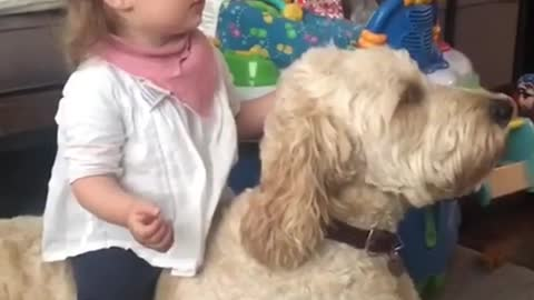 Little Kid Riding the Dogy