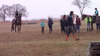 Horse Ran Over The Trainer! - Video