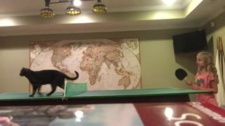 Cat Wants To Play Ping Pong - Video