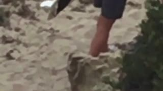 When you think you can surf but you're wearing shoes on the beach shirtless guy wears socks on the beach - Video