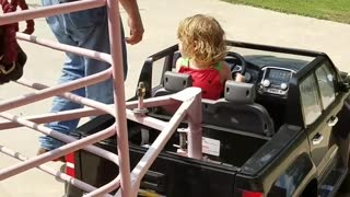 Toddler Tows Mini Horse in Custom Trailer