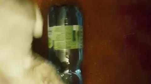 Caty Playing With Water Bottle