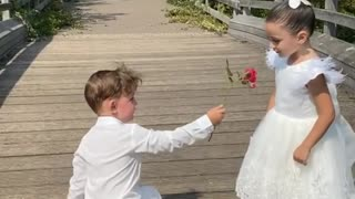 Sweet little boy gets down on one knee to give girl a rose