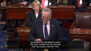 Schumer Tells GOP to Stop Talking During His Speech Since They're 'Messing Up America' - Video