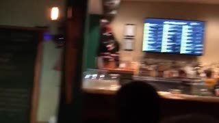 Cat gets carried out of bar - Video