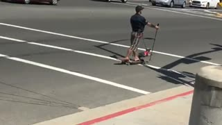 Guy skateboard street dog on leash skis - Video