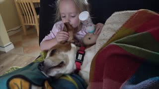 Little girl uses dog's ears as baby wipes
