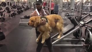 Squat your dog challenge  - Video