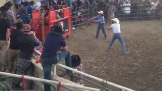 Bull Riding Whiplash - Video