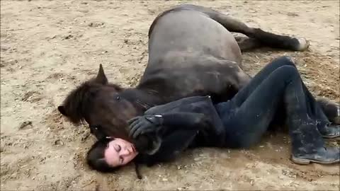EMOTIONAL! MUTUAL TRUST, THE BOND BETWEEN HORSE AND HUMAN