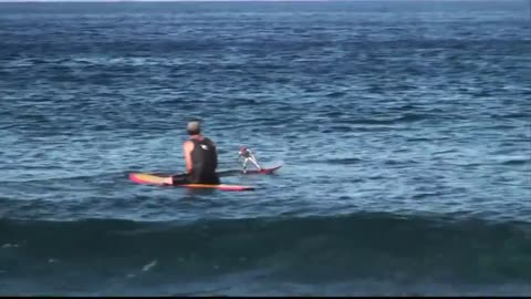 Surfer battles it out with remote controlled surfer