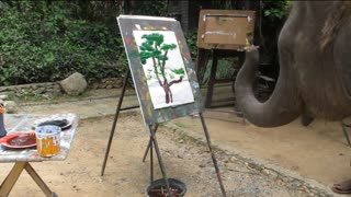 This Elephant Is an Artist - Video