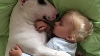 The Cutest Cuddle Buddies!! - Video