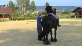 (VIDEO) Gorgeous and Amazing – Riding Stunt Horse! - Video