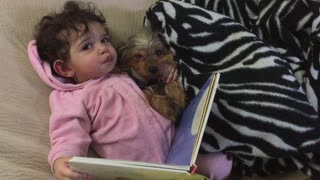 Baby and puppy read book before bedtime - Video
