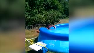Man Bellyflops Into Inflatable Pool Off Ladder - Video