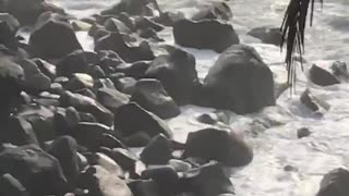 Guy on top of rocks gets splashed by waves