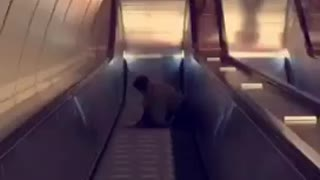 Man in black jacket and jeans falls down escalators
