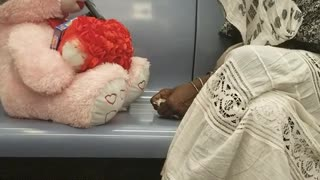 Woman talks to pink bear next to her on train