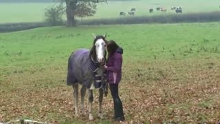She Comes Home After 3 Weeks Away. Watch Her Horse's Reaction When He Realizes It..