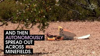These Robotic Turtles Could Clear Minefields - Video