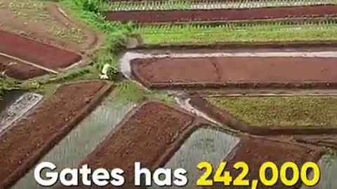 Bill Gates The Biggest Owner of Farmland in The US