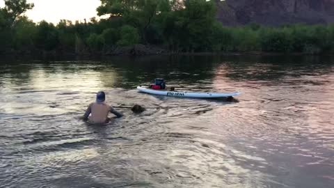 Stand Up Paddle Boarding Fail
