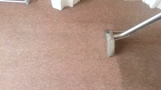 Carpet Cleaning Brisbane - Video