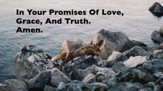 From Dawn To Dusk I Will Rest In Your Promises Of Love - Video